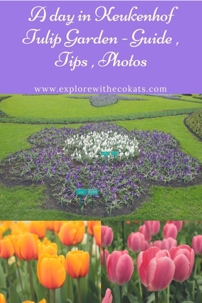Keukenhof Tulip garden guide
