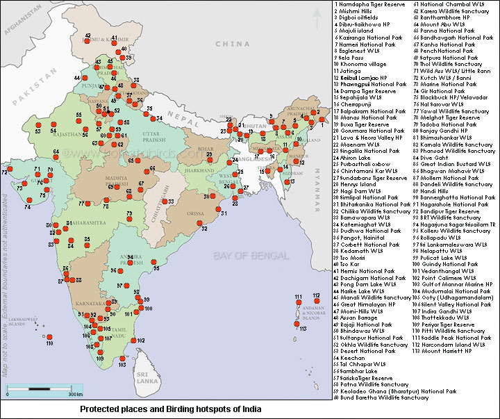 National Parks In India Map - The Best Picture Park In The World on map of india islands, map of india china, map of india maps, map of india tigers, map of india architecture, map of india politics, map of india cattle, map of india rivers, map of india independence, map of india parks, map of india jungles, map of india range, map of india history, map of india africa, map of india natural resources, map of india landscape, map of india food, map of india waterways, map of india states, map of india sea,