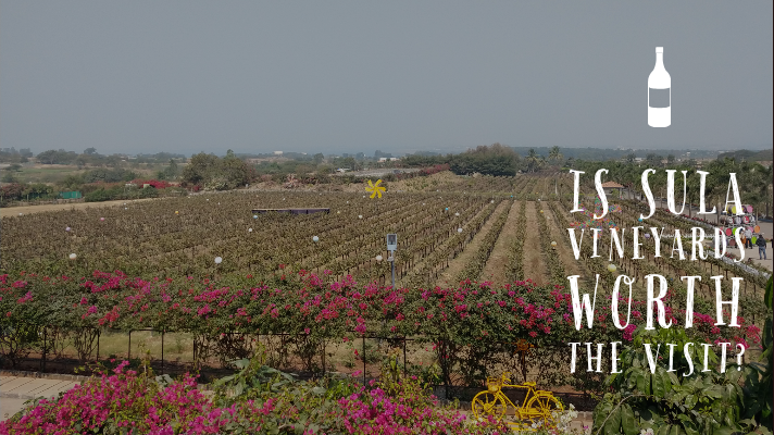 Is Sula Vineyards worth the visit? - Explore with Ecokats